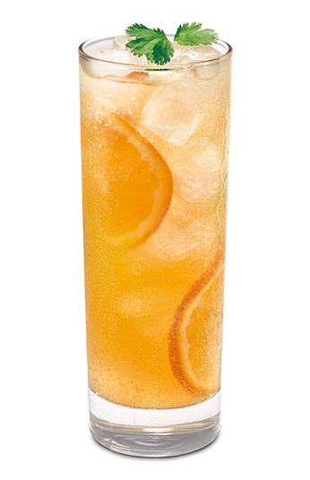 _0040_ginger-ale-twist png.png